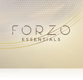 FORZO Essentials Overview