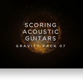 Scoring Acoustic Guitars Overview