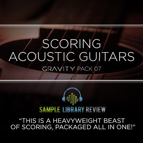 SLR Reviews Scoring Acoustic Guitars