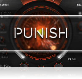 PUNISH Overview